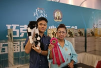 CHOCOLATE HEART CLUB 5TH CAT SHOW JULY.30-31,2016